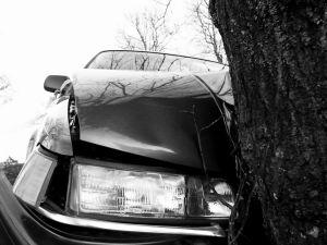 car insurance premiums reduce again